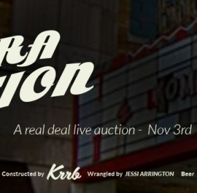 lights camera auction