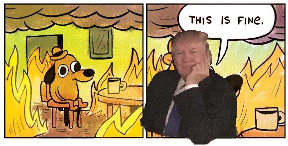 "Trump ""this is fine"" - Via Twitter @JonathanHair"