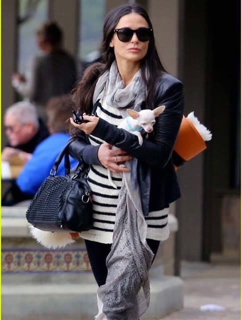Demi Moore takes her dog to Yoga Via - http://www.justjared.com