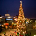 tree-lighting-pier-39