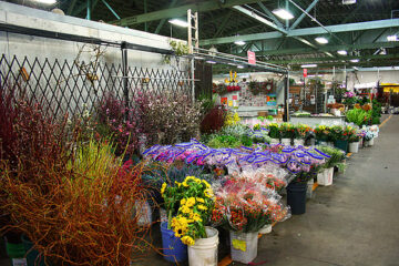 San-Francisco-Flower-Mart