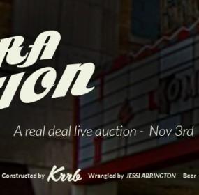 lights camera auction