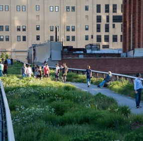 high-line-guided-tour-nyc