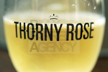 THORNY-ROSE-WINES-Launch-Event