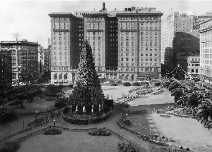 union-square-xmas-tree