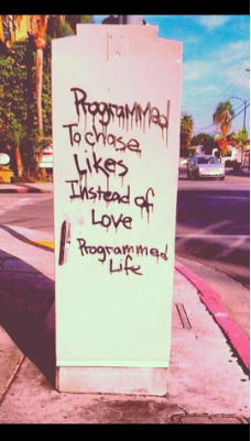 Programmed-to-chase-likes