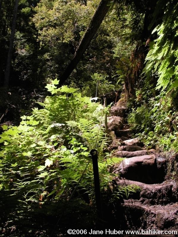 Basin Hike