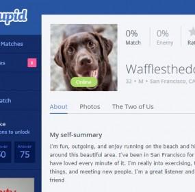 waffle profile cover 2