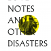 Love Notes and Other Disasters