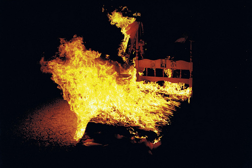 Photo credit: www.veronicavangogh.com
