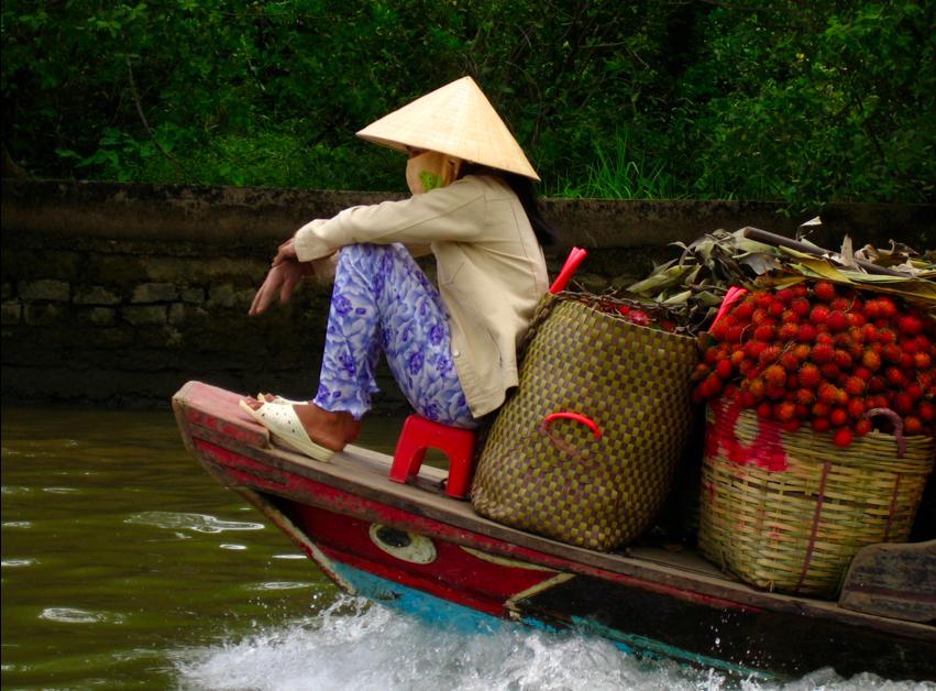 Lyft in Vietnam
