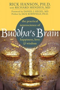 buddhas-brain-book-meditation