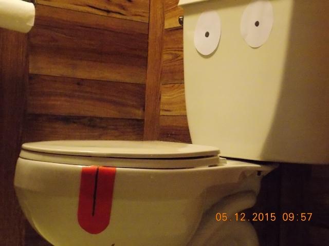 best-toilet-to-poo