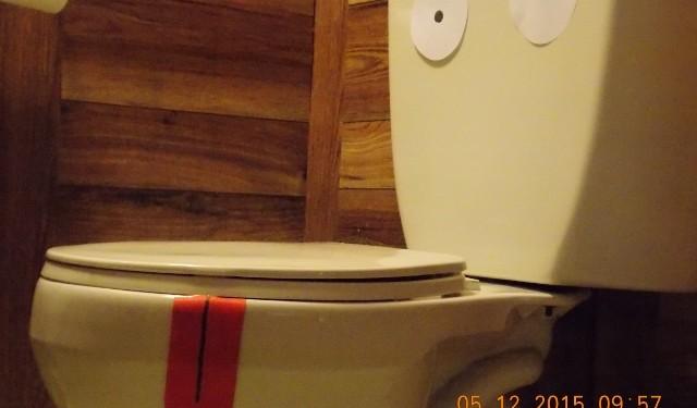 best-toilet-to-poo-SF-640x480
