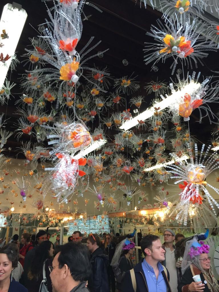 carnival sf 054