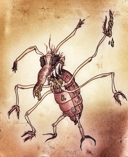 bedbug-sucks-blood-at-night-drawn-by-rachel-green
