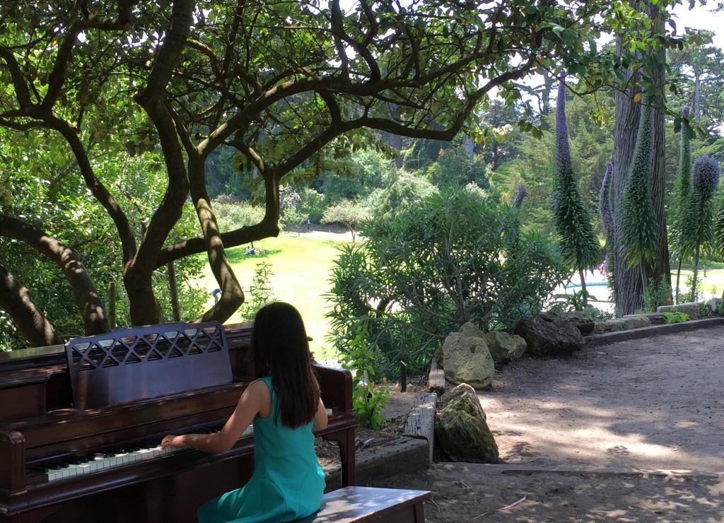 Meditereanean garden