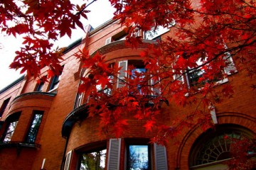 autumn_brownstones
