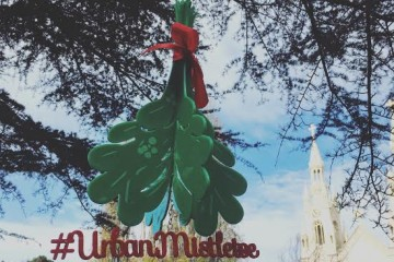 urban-mistletoe SF 1