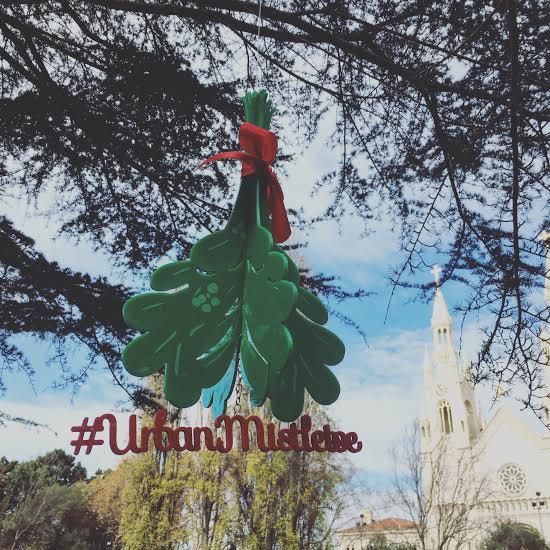 urban-mistletoe SF 1