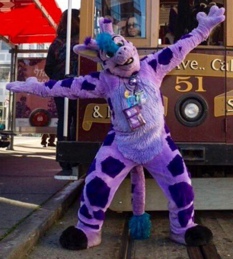 san-francisco-furry-zarafa-cable-car