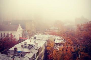 n y fog
