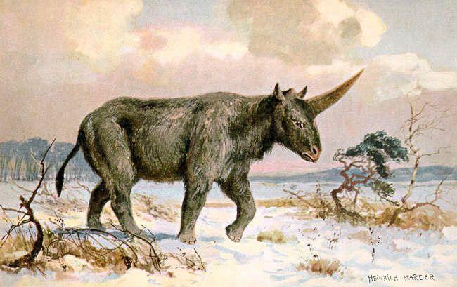 siberian-unicorn-painting-01.jpg.653x0_q80_crop-smart