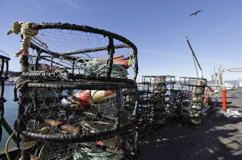 crab cage