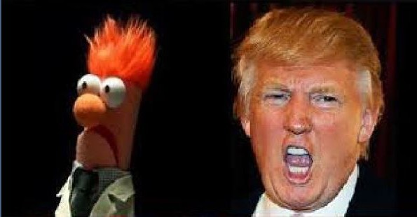 donald and beaker