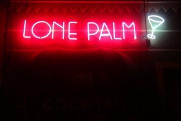 lone-palm