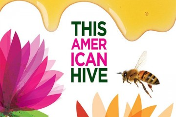 ths american hive