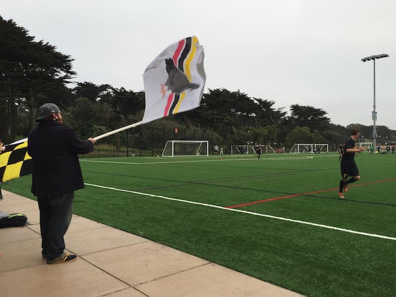 pigeon flag