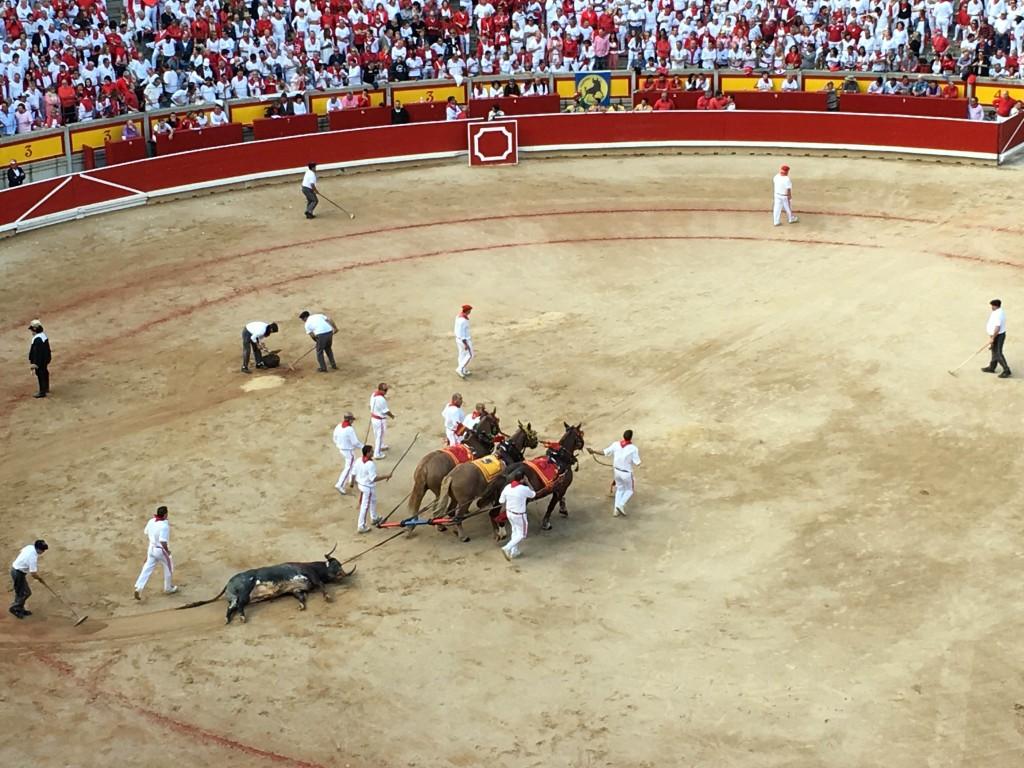 bullfight drag s