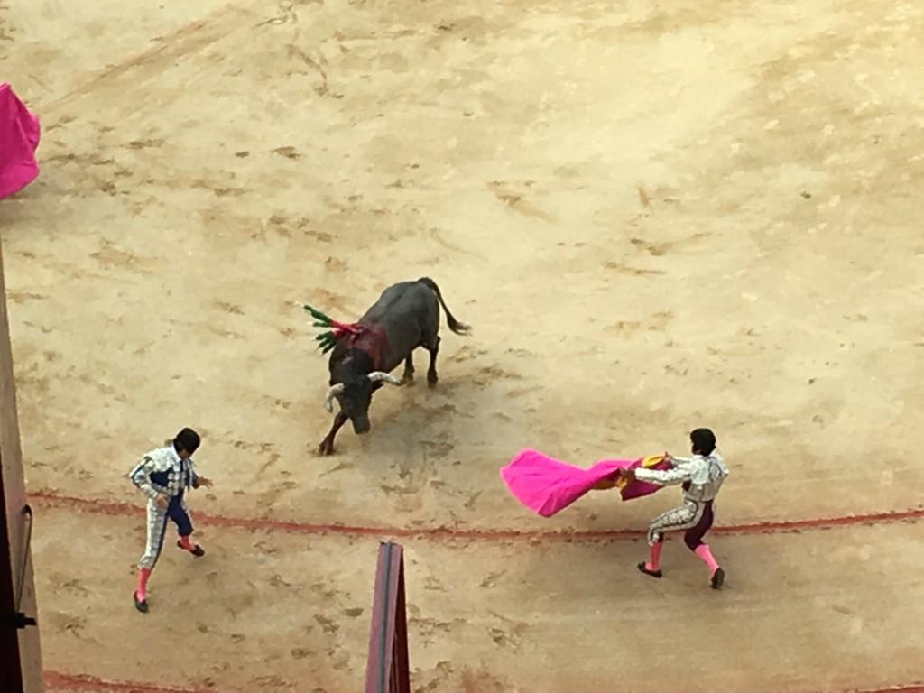 bullfight minions s