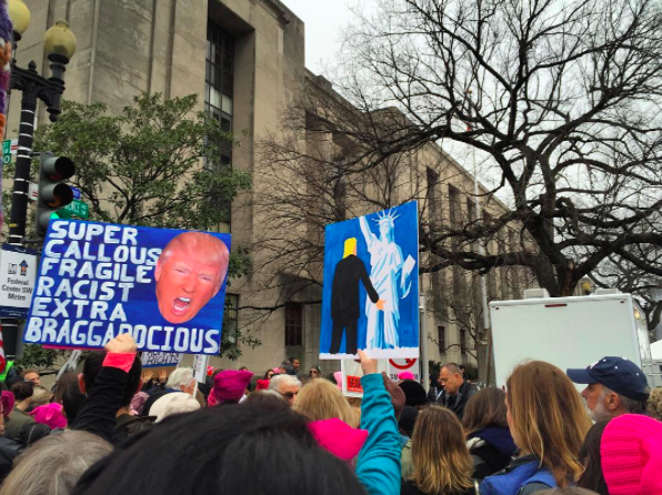 womens-march-protest-signs
