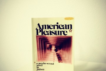 american_pleasure_novel