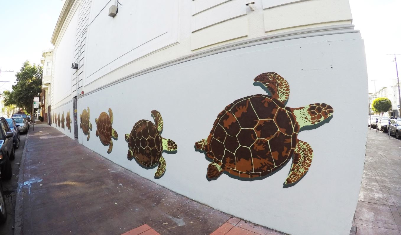 turtles fnnch