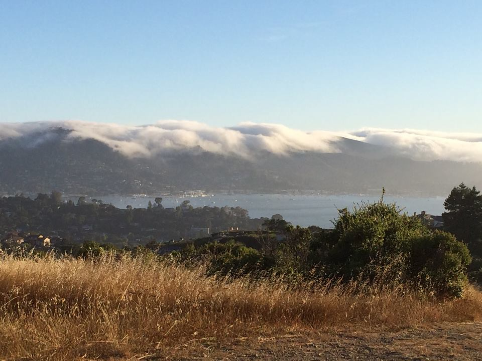 Marin-headlands-rolling-fog-bay-nature-hike-hill-view-Sausalito
