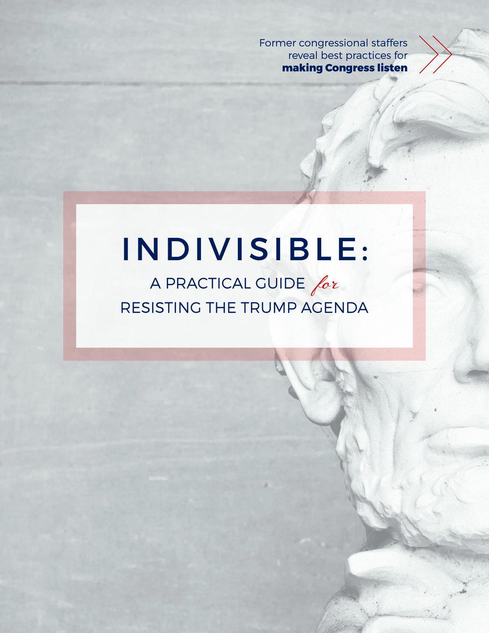 resisting trump guide