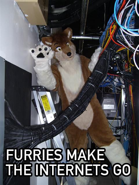 furries-internet